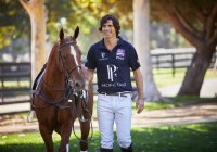 Pacific Fair Magic Millions Polo Photo From Magic Millions Polo Website