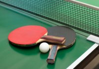 Table Tennis 535x350